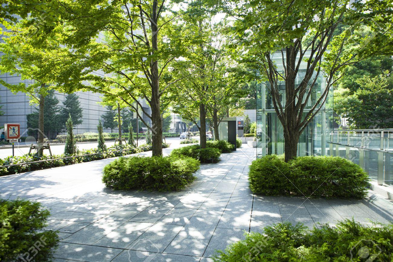 Urban greening plan Stock Photo - 51114371