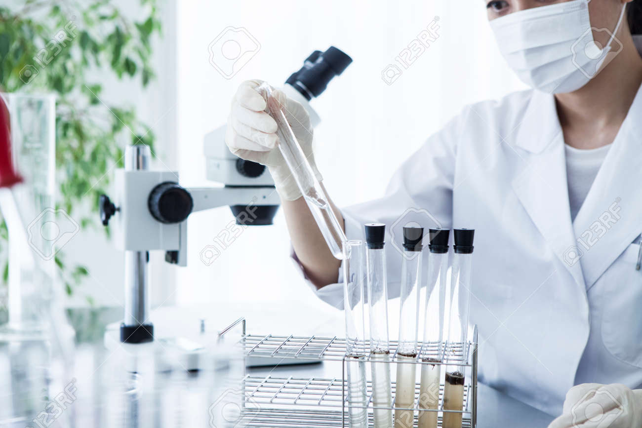 scientific researcher looking at a test tube in a laboratory. - 60458736