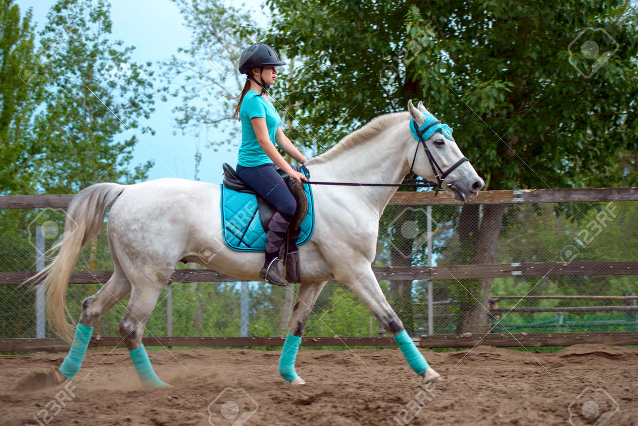 girl rider trains the white horse in the riding course in summergirl rider trains the white horse in the riding course in summer day stock photo