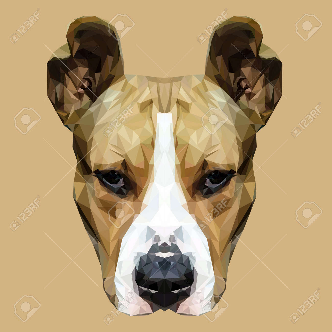 56506131-american-staffordshire-terrier-dog-animal-low-poly-design-triangle-vector-illustration-.jpg