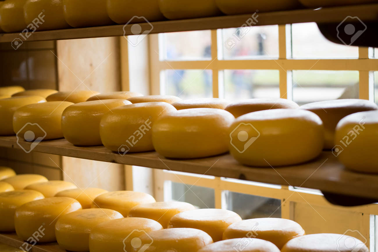 Cheese wheels on a shelf - 142283798