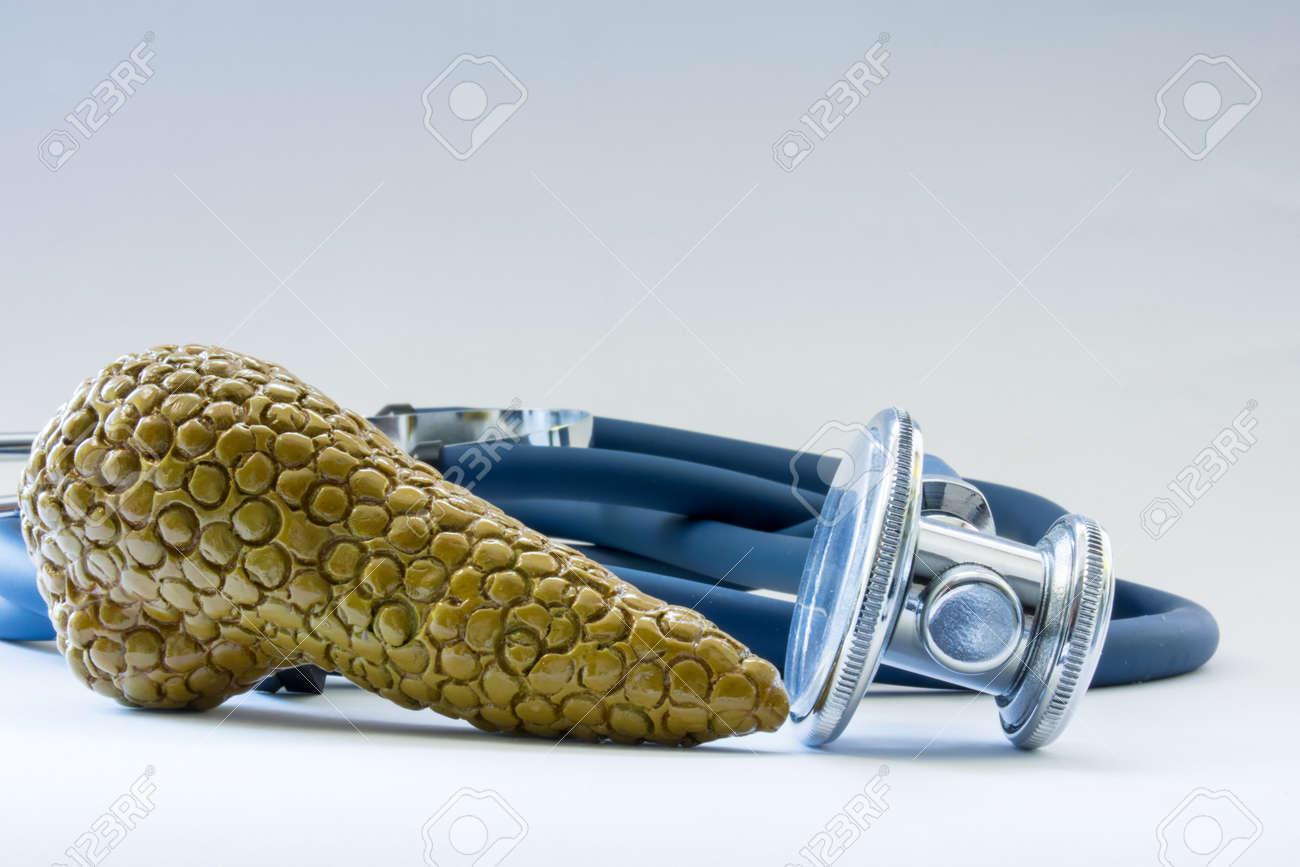 Bauchspeicheldrüse In Der Nähe Von Stethoskop Als Symbol Für Die ...