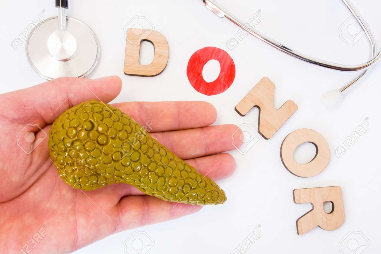 Donation Of Pancreas And Hand Of Donor Concept Photo Word Of
