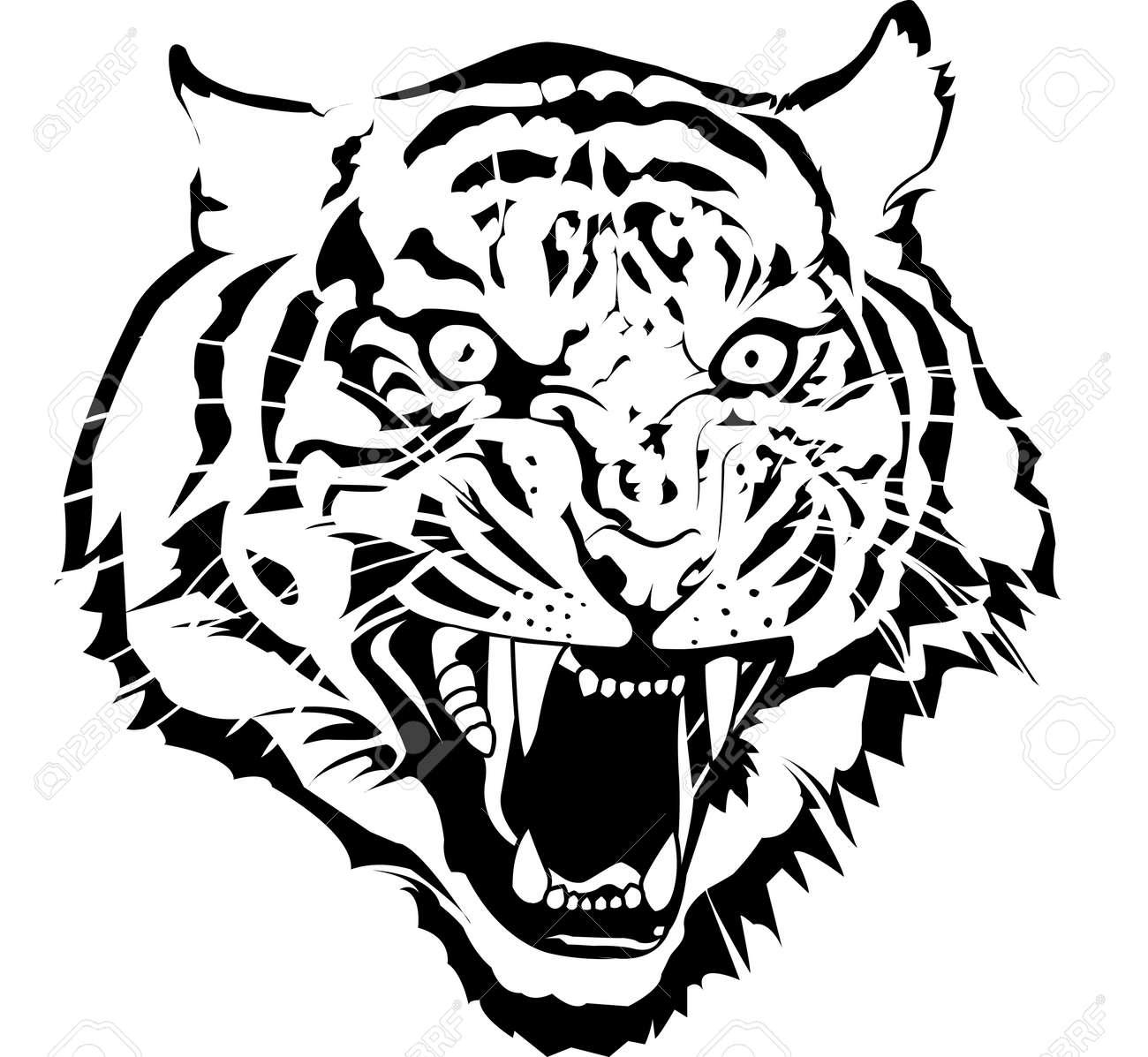 Favori Tete De Tigre Banque D'Images, Vecteurs Et Illustrations Libres De  ZC46