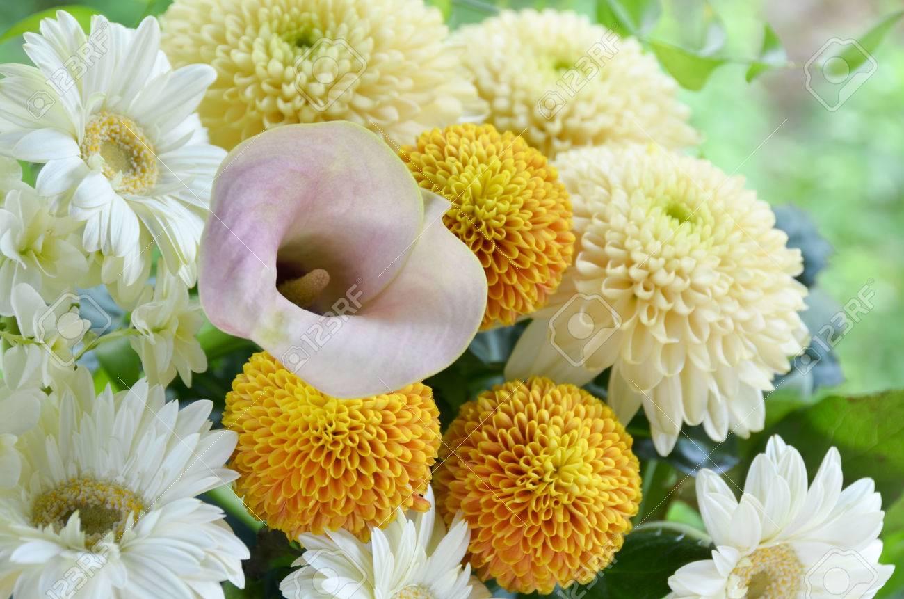 chrysanthemum flower and gerbera bouquet - 43043038