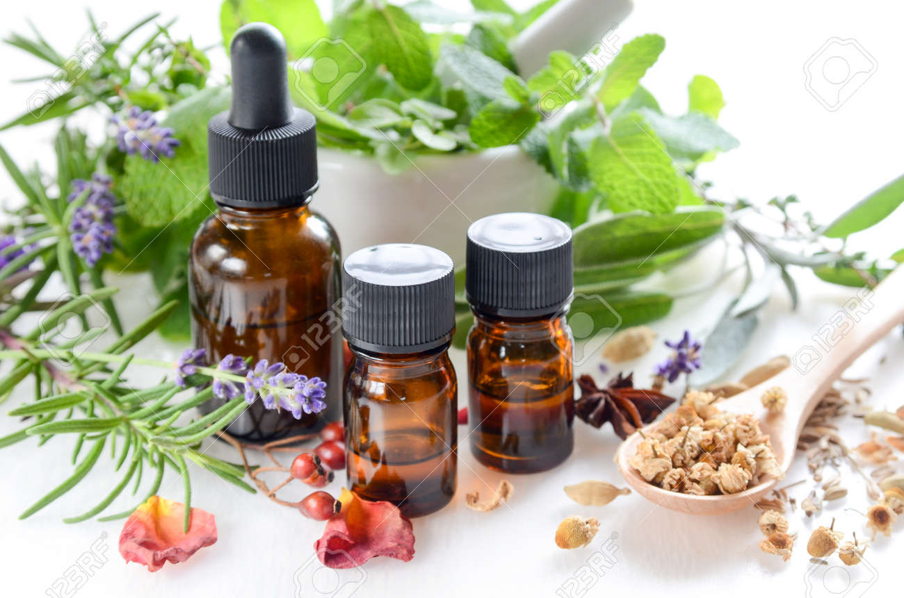 essential oils and herbs for natural apothecary - 50454012