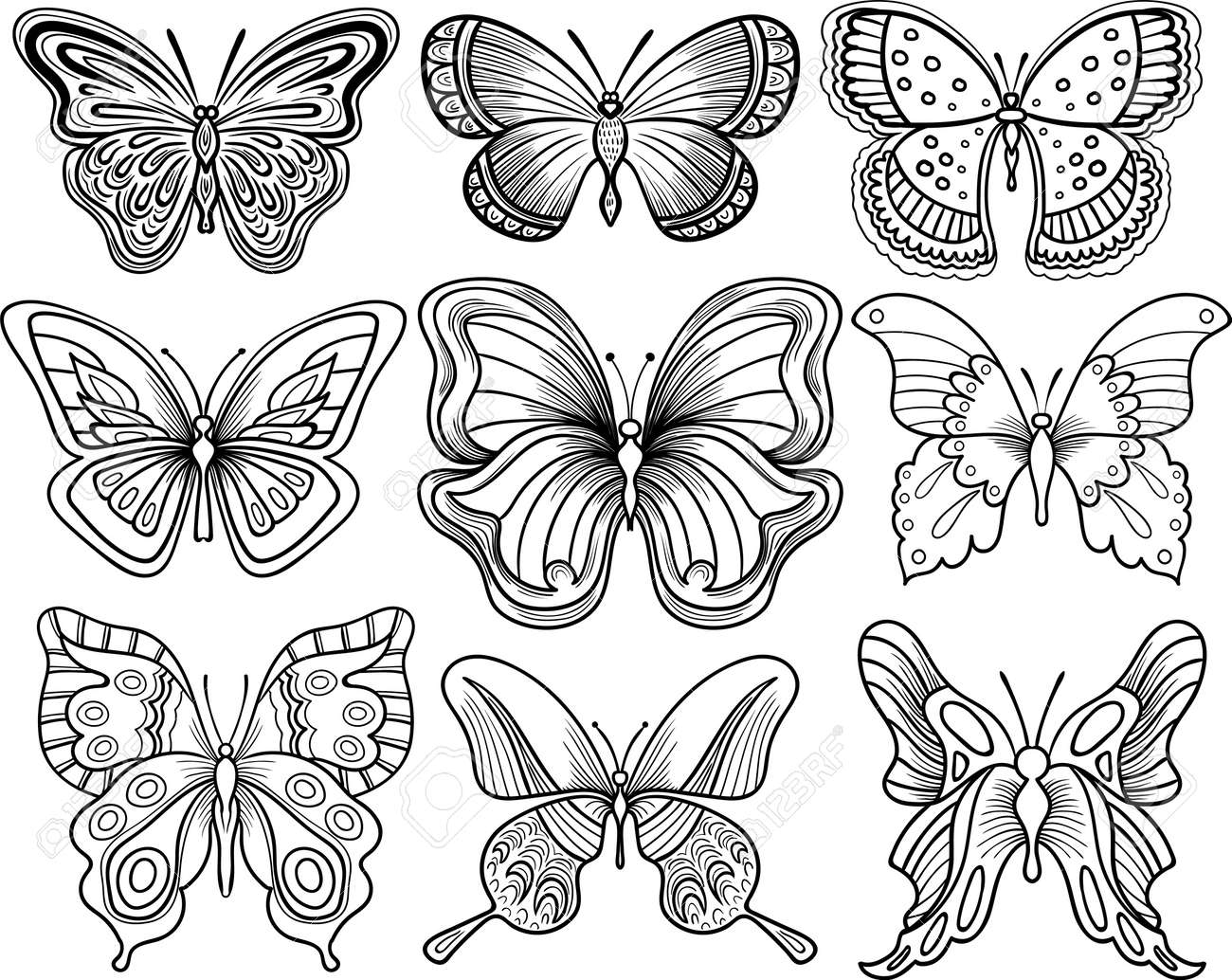 hand drawing butterfly vector clipart black outline royalty free