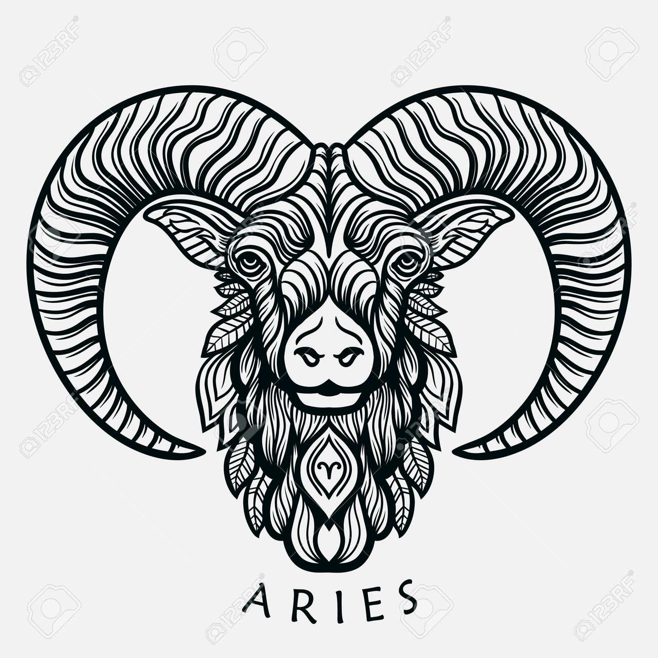 Hand Drawn Romantic Beautiful Line Art Of Zodiac Aries Vector