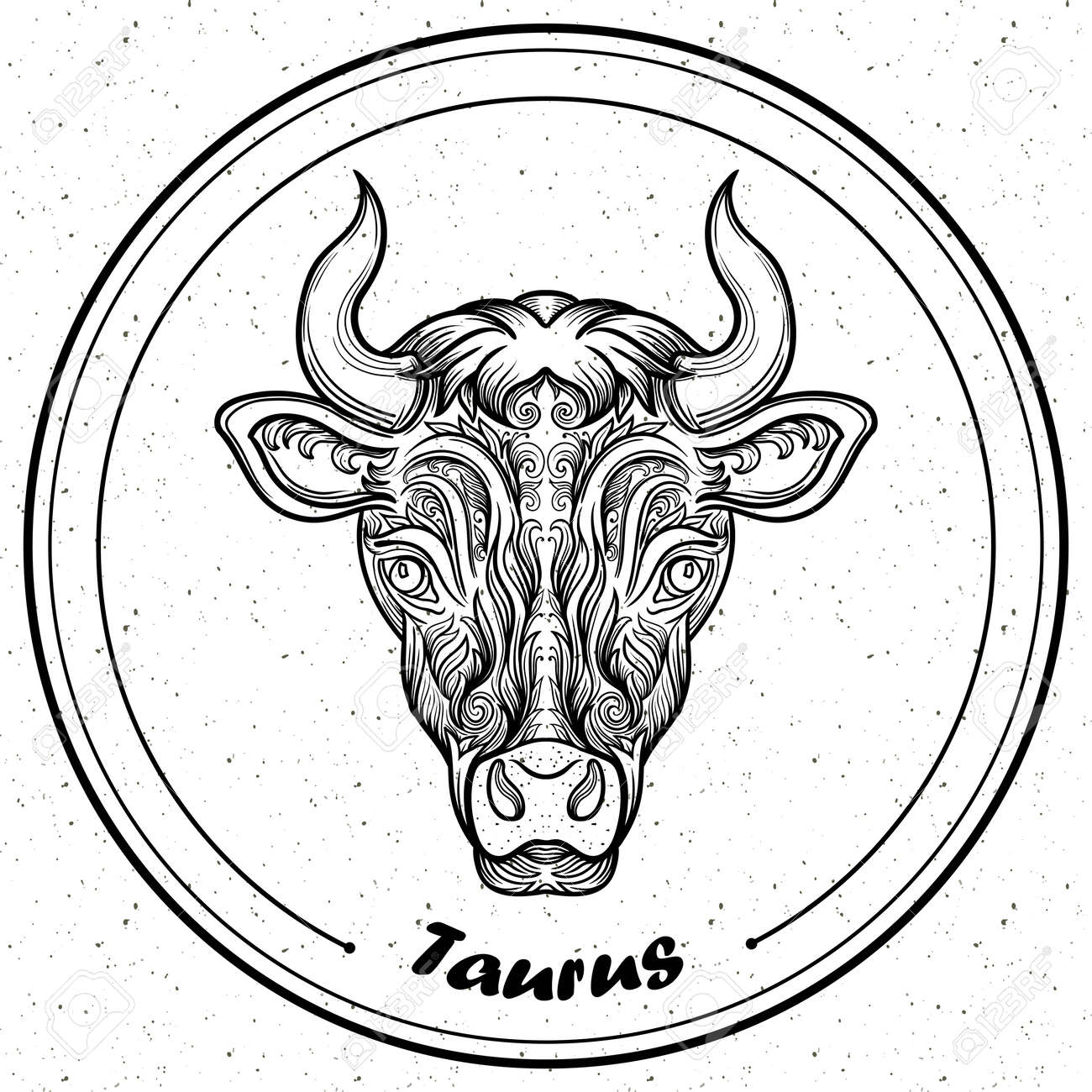 detailed taurus in aztec filigree line art style tattoo coloring