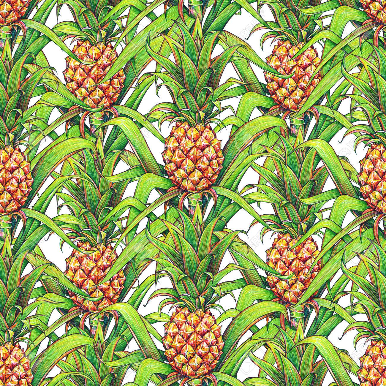 Ananas Mit Grünen Blättern Tropischen Früchten Auf Einem Bauernhof ...