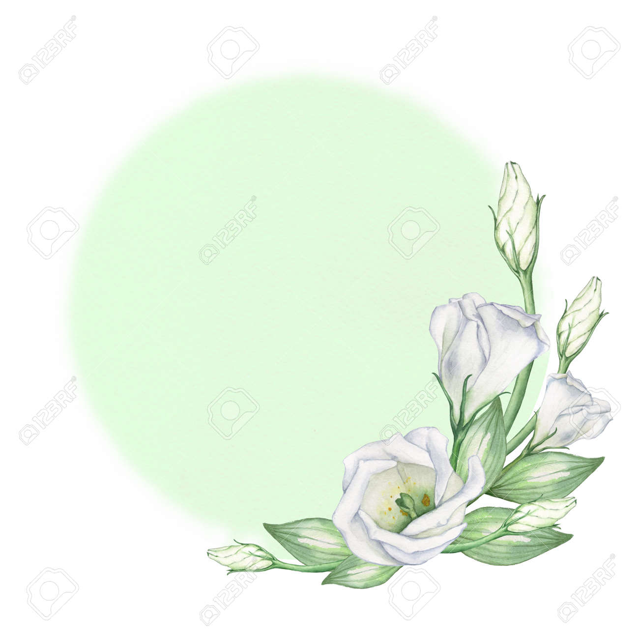 Green Round Background With White Flowers The Texture Of Watercolor
