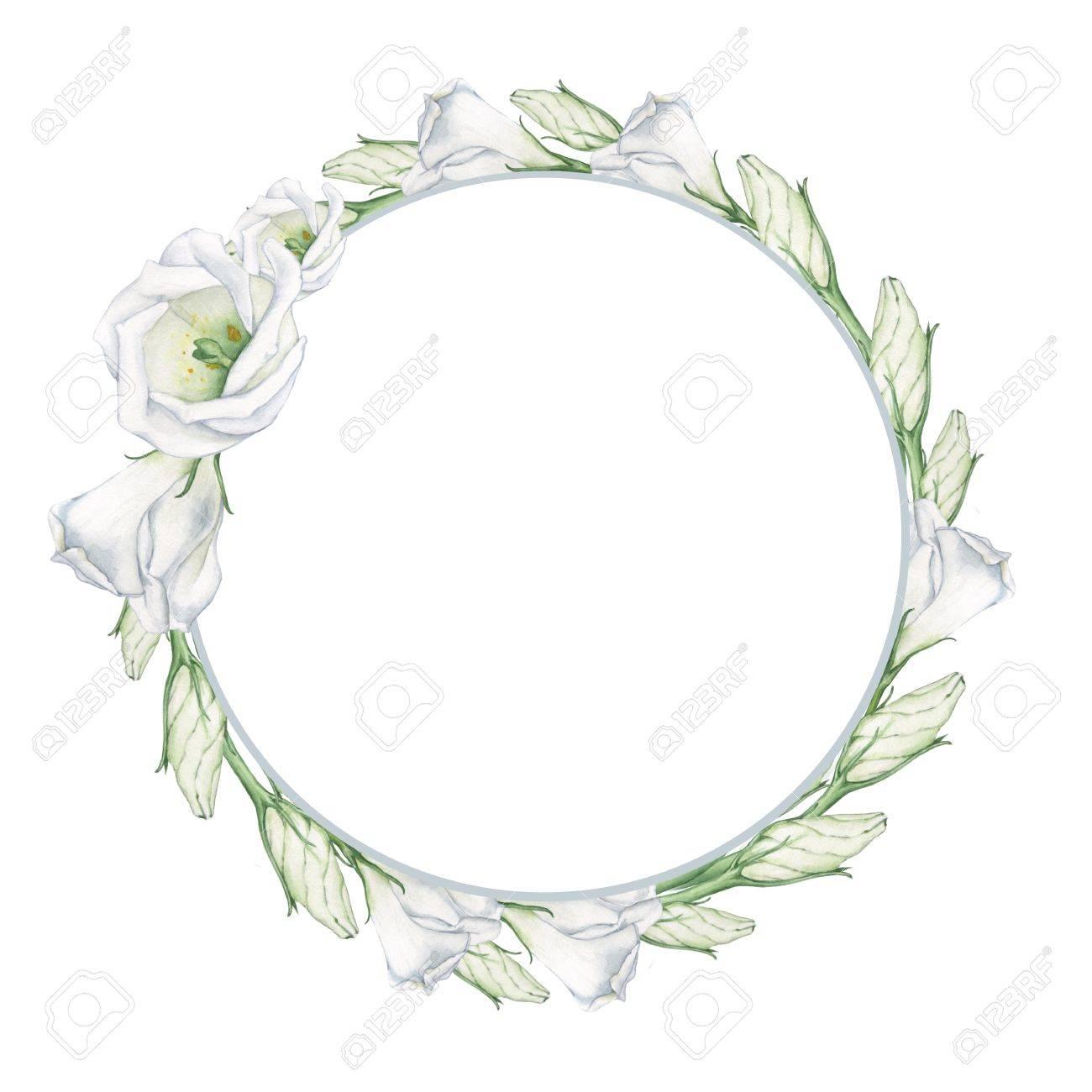 Fleurs blanches 4. Une couronne pour la décoration de cartes de mariage,  invitations et affiches. La peinture à l\u0027aquarelle. dessin à la main.