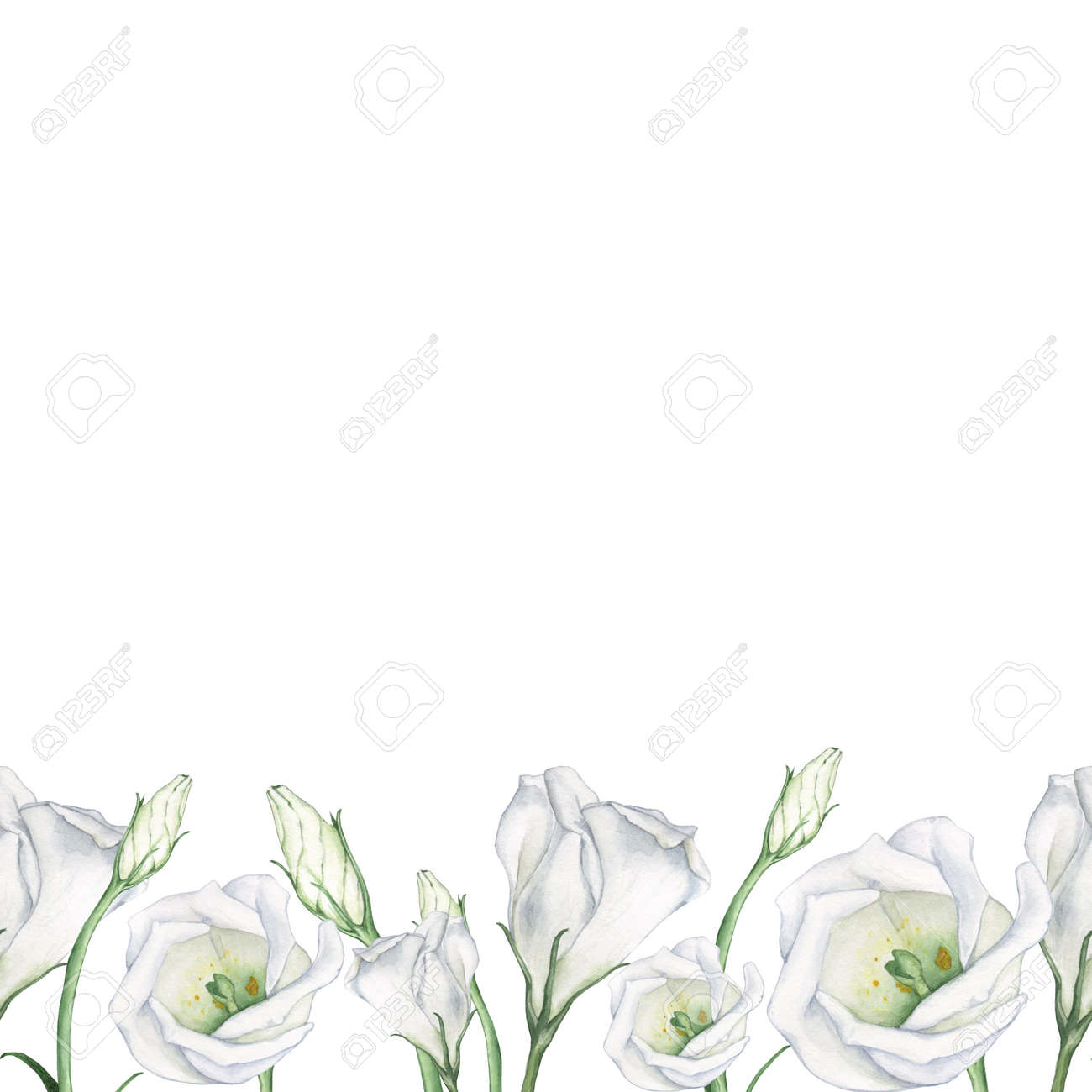 Seamless floral pattern of white flowers watercolor painting seamless floral pattern of white flowers watercolor painting hand drawing decorative element suitable mightylinksfo
