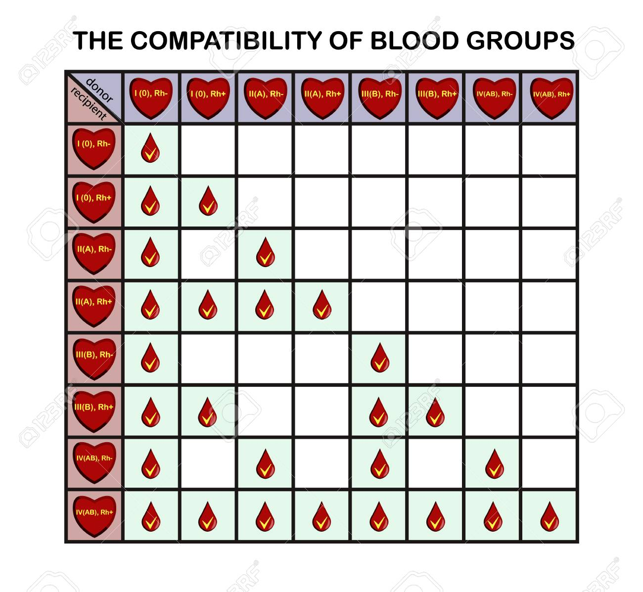 Infographics on the subject of blood donation, vector - 101608372