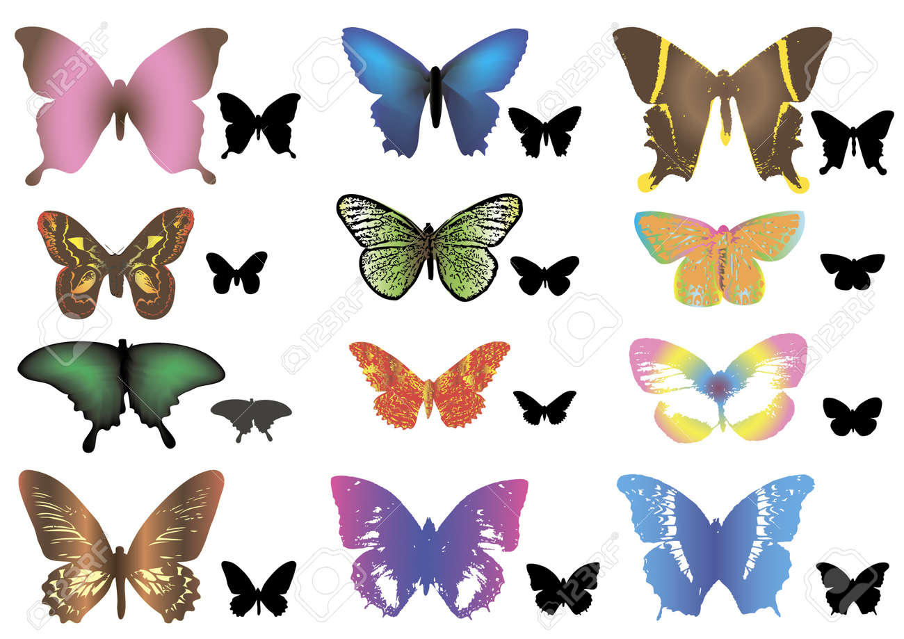 color butterflies silhouettes royalty free cliparts vectors