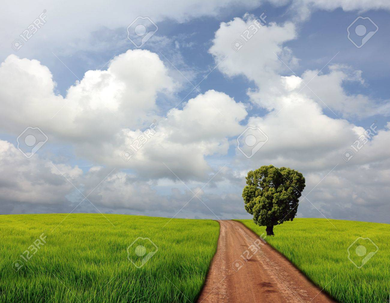 country road Stock Photo - 10272853