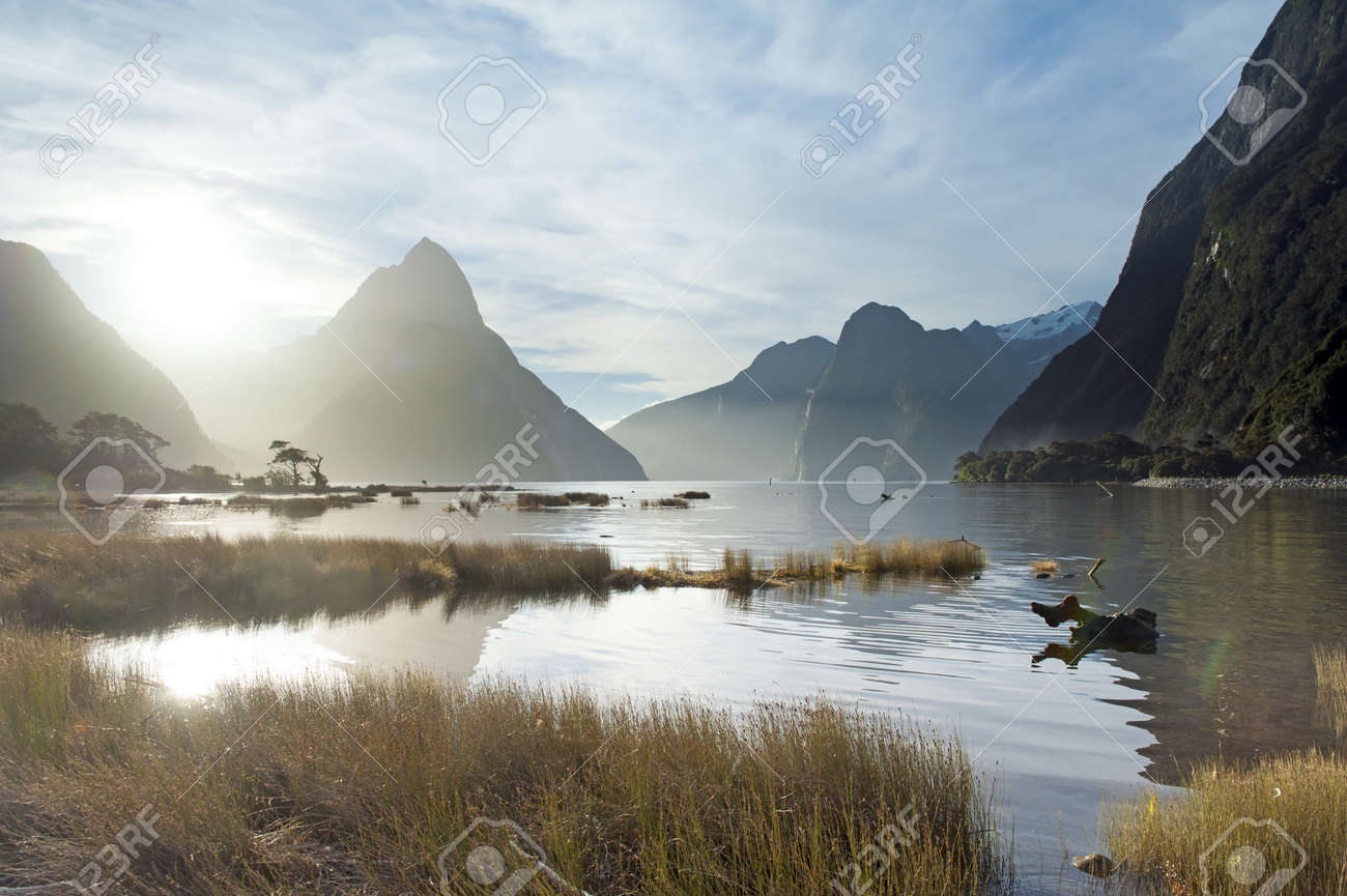 landscape of high mountain glacier at milford sound, New Zealand Stock Photo - 19290760