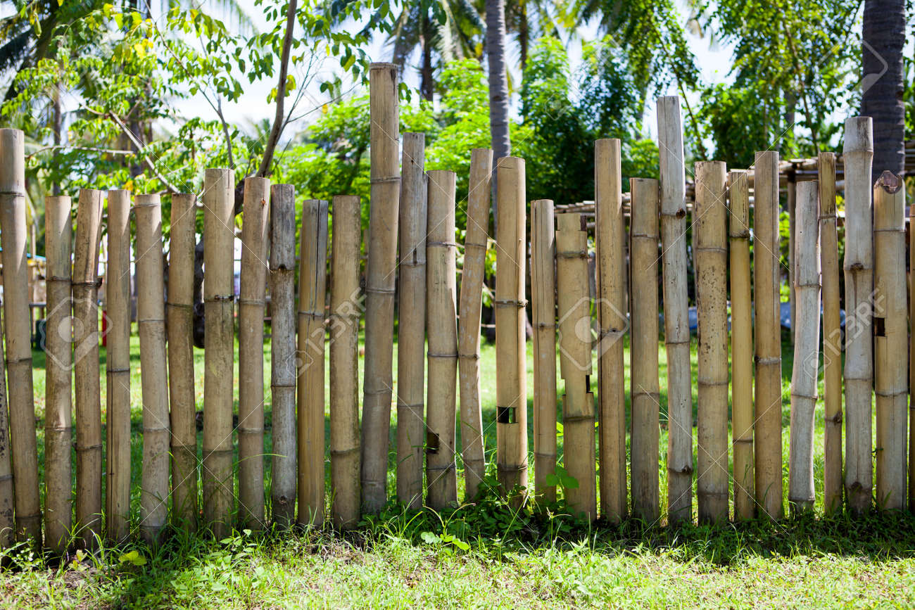 Old Bamboo Fence In A Tropical Country With Sunlight Texture Background Stock Photo