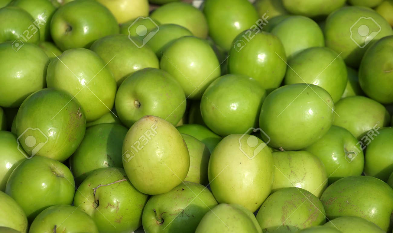 Green Jujube fruits or Chinese dates are a popular fruit in Taiwan