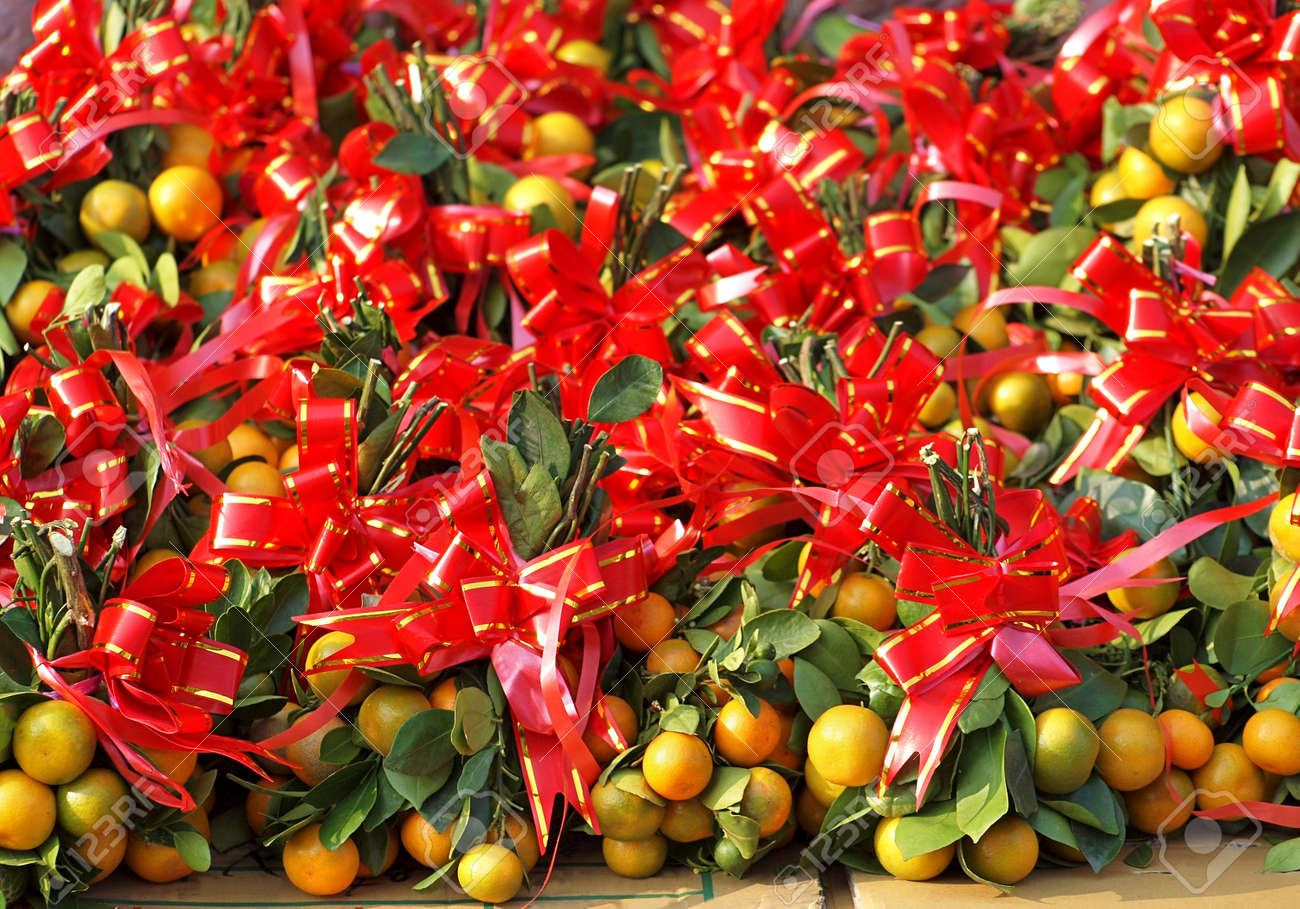 Calamondin or mini oranges are adorned with red and gold ribbons calamondin or mini oranges are adorned with red and gold ribbons as good luck symbols for buycottarizona