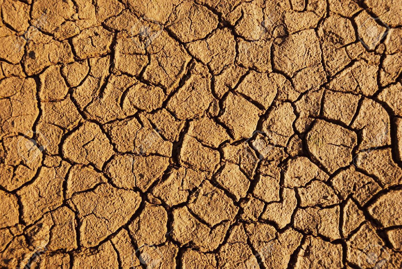 Dry weathered desert soil background with pattern of cracks - 10273318