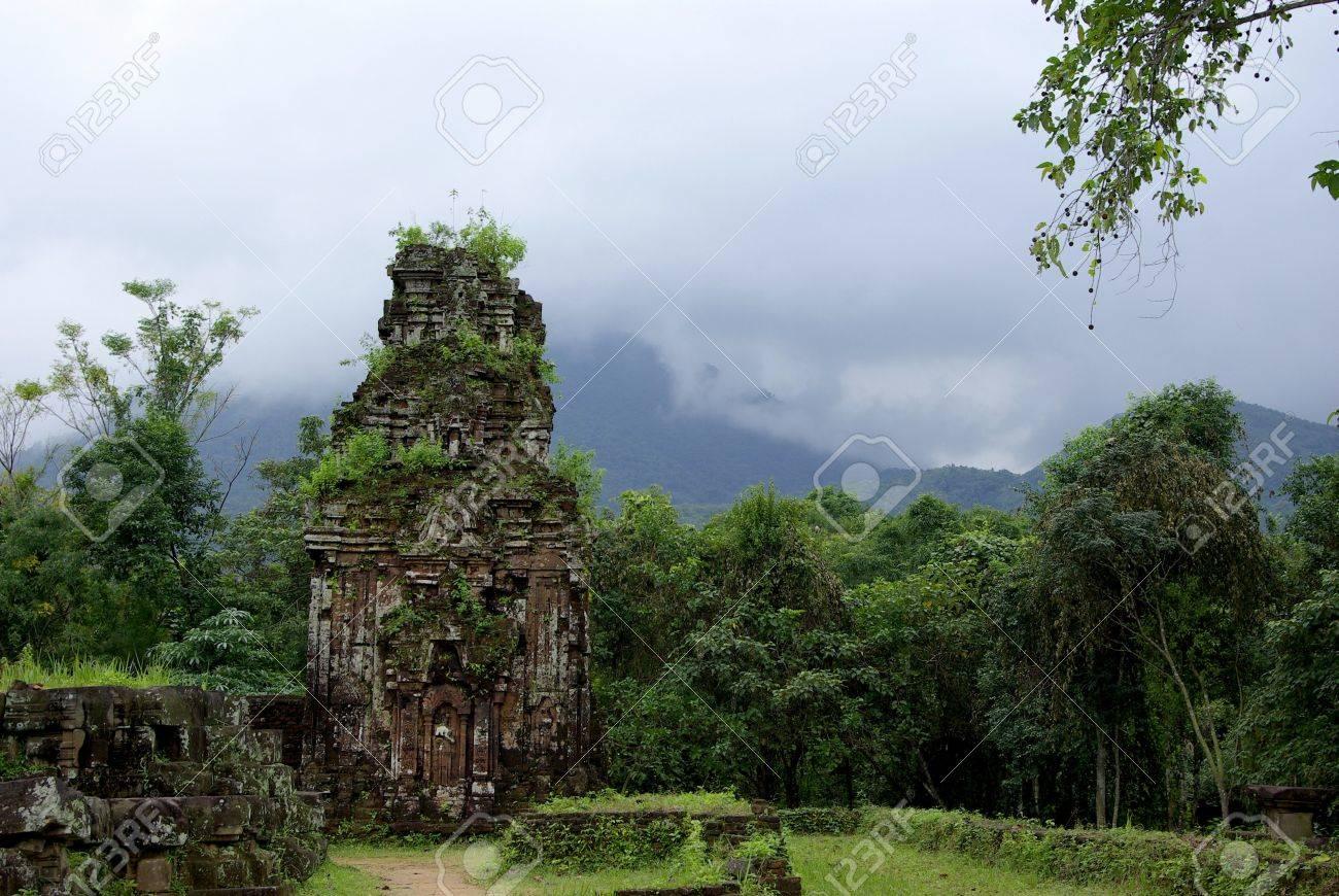 Cham ruins in lush vegetation - 6256257