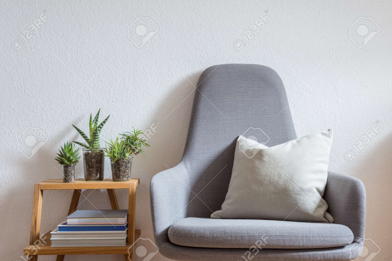 photo modern armchair with pillow in bright living room decorated with books and succulents