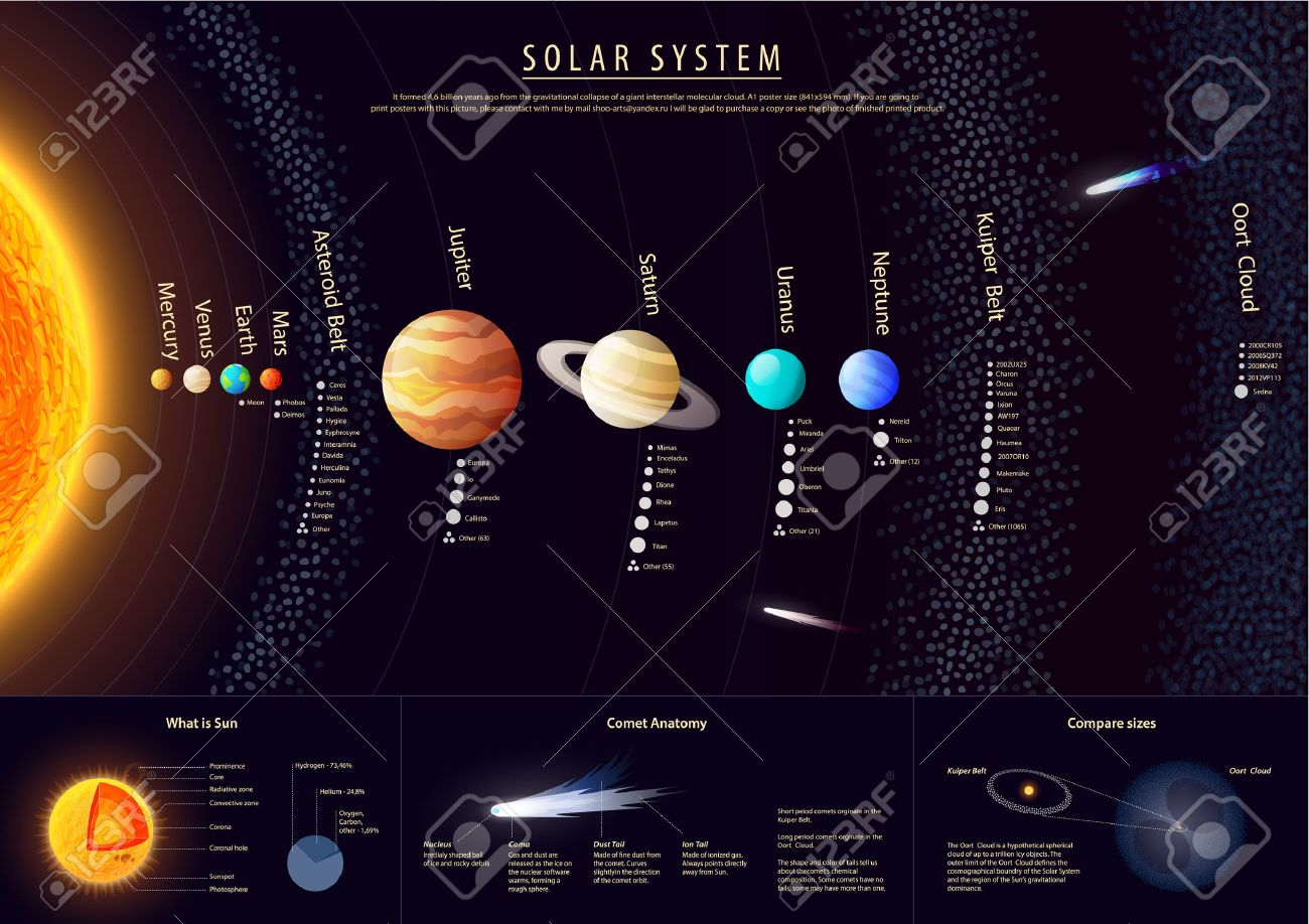Detailed Solar system poster with scientific information vector - 41562573