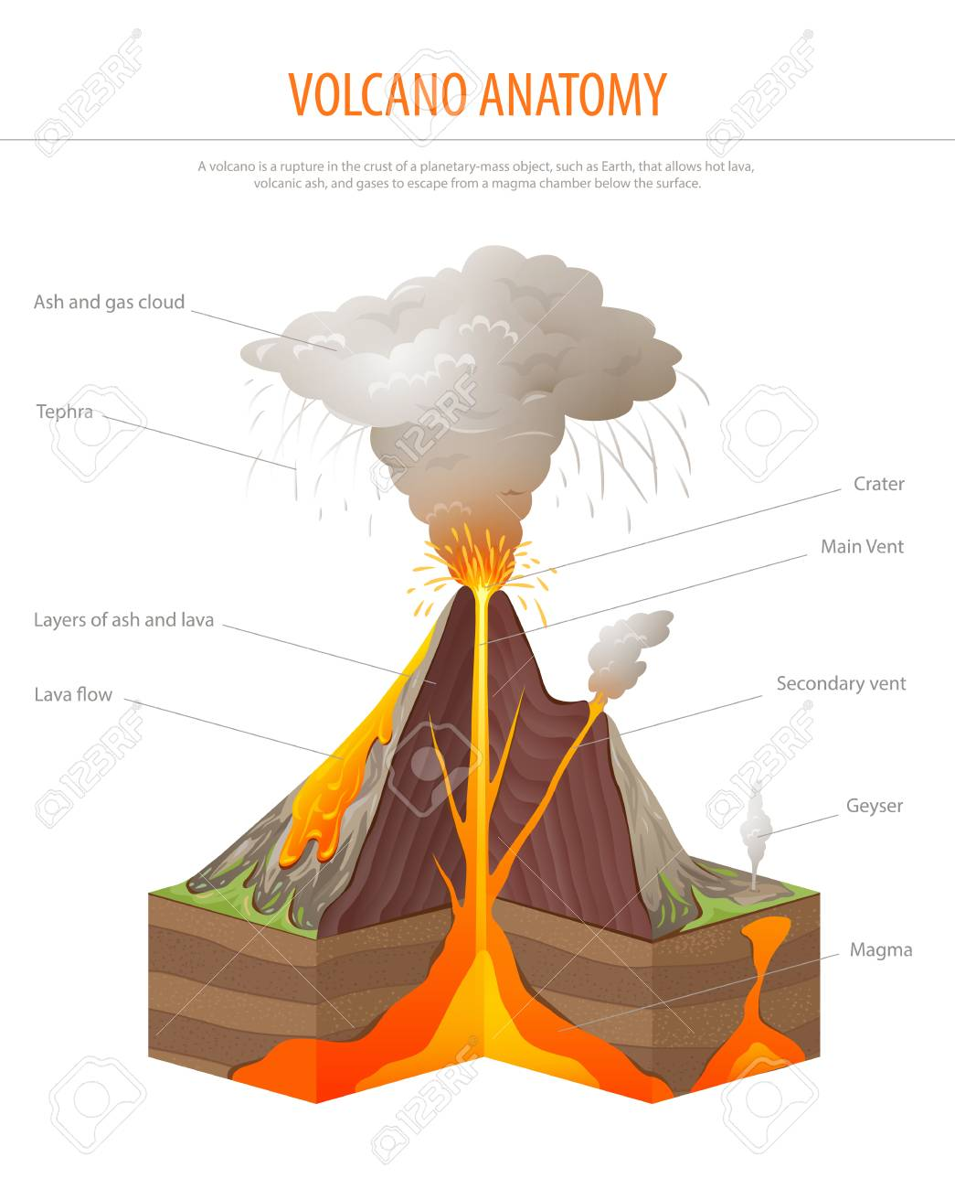 Volcano cross section education poster vector royalty free cliparts vector volcano cross section education poster vector ccuart Gallery
