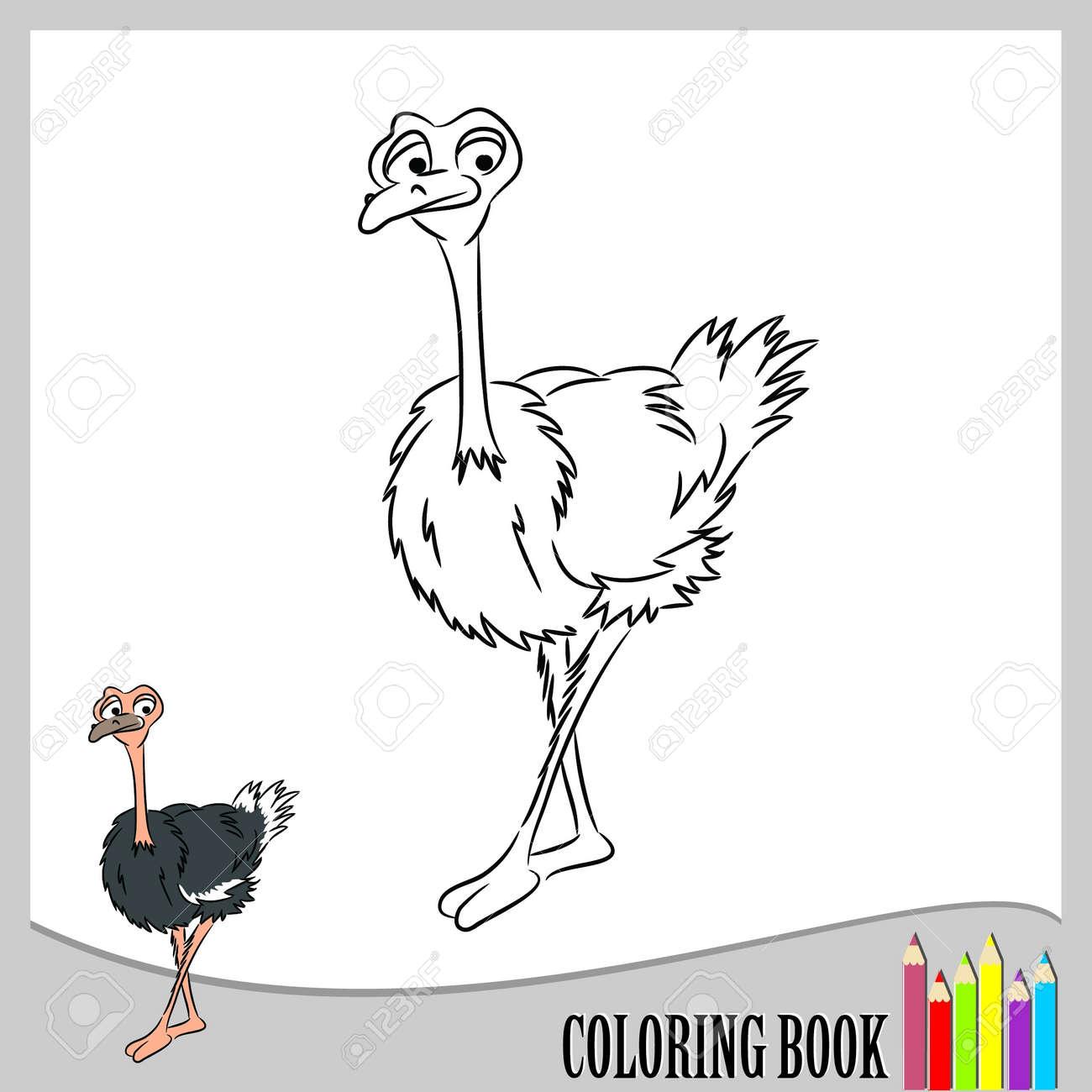 Livre A Colorier Drole D Autruche Clip Art Libres De Droits Vecteurs Et Illustration Image 21675471
