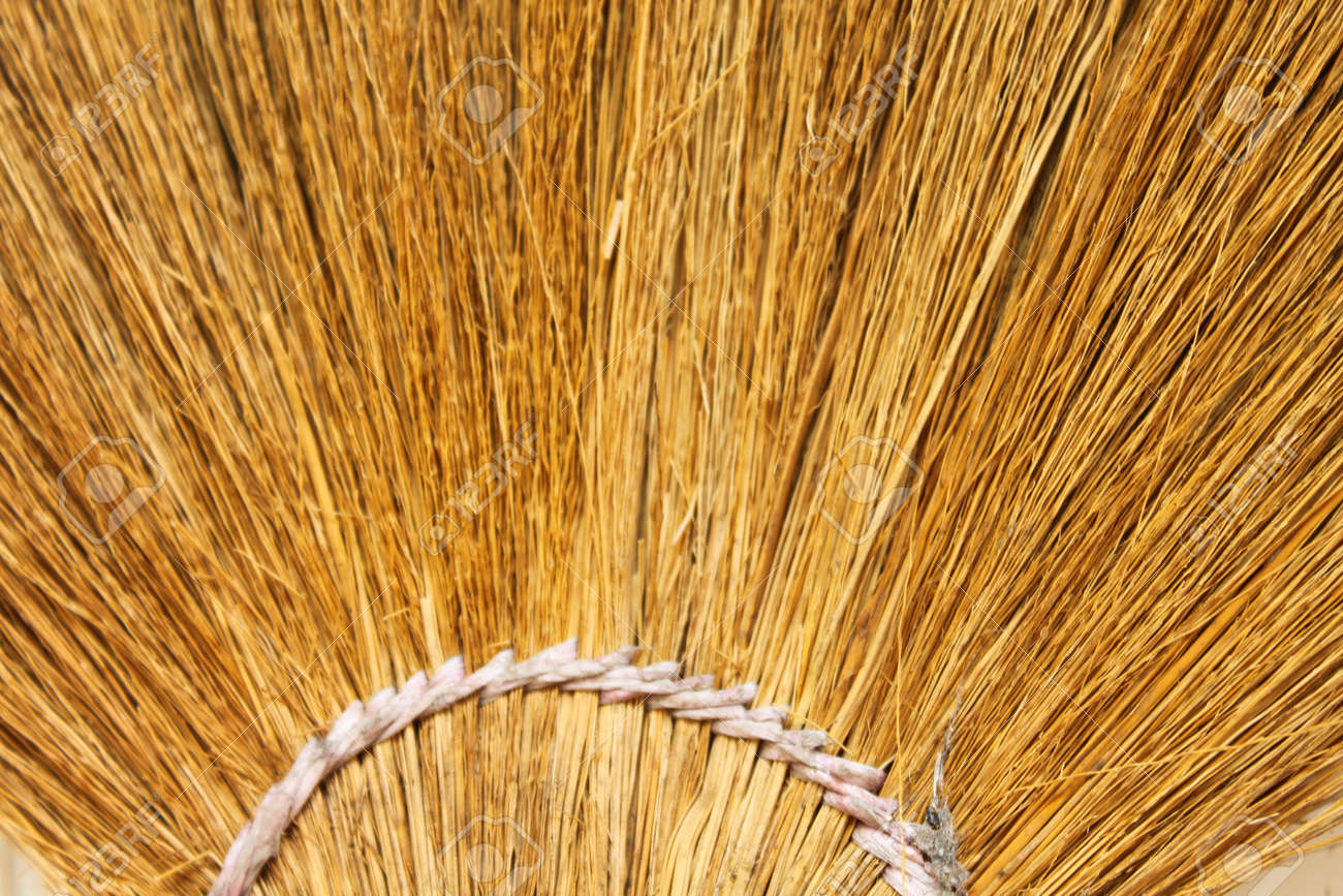 dried grass mob pattern Stock Photo - 13635741
