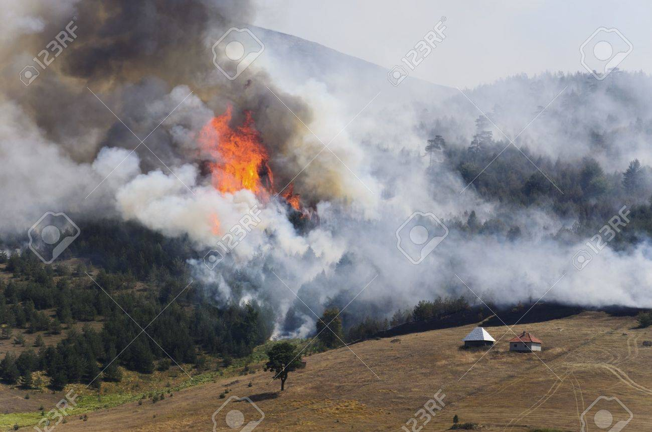 Large fire on Mount Zlatibor. A fire swept through a forest and meadow. Log cabins are in danger. Thick smoke spread. Stock Photo - 15605311