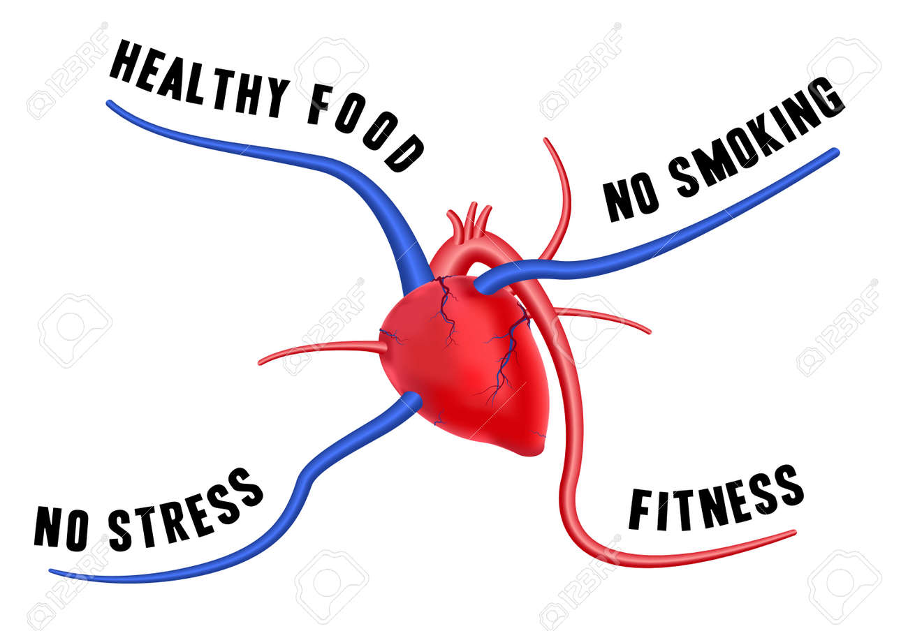 The diagram shows four tips for a healthy heart the concept the diagram shows four tips for a healthy heart the concept of long life stock ccuart Images