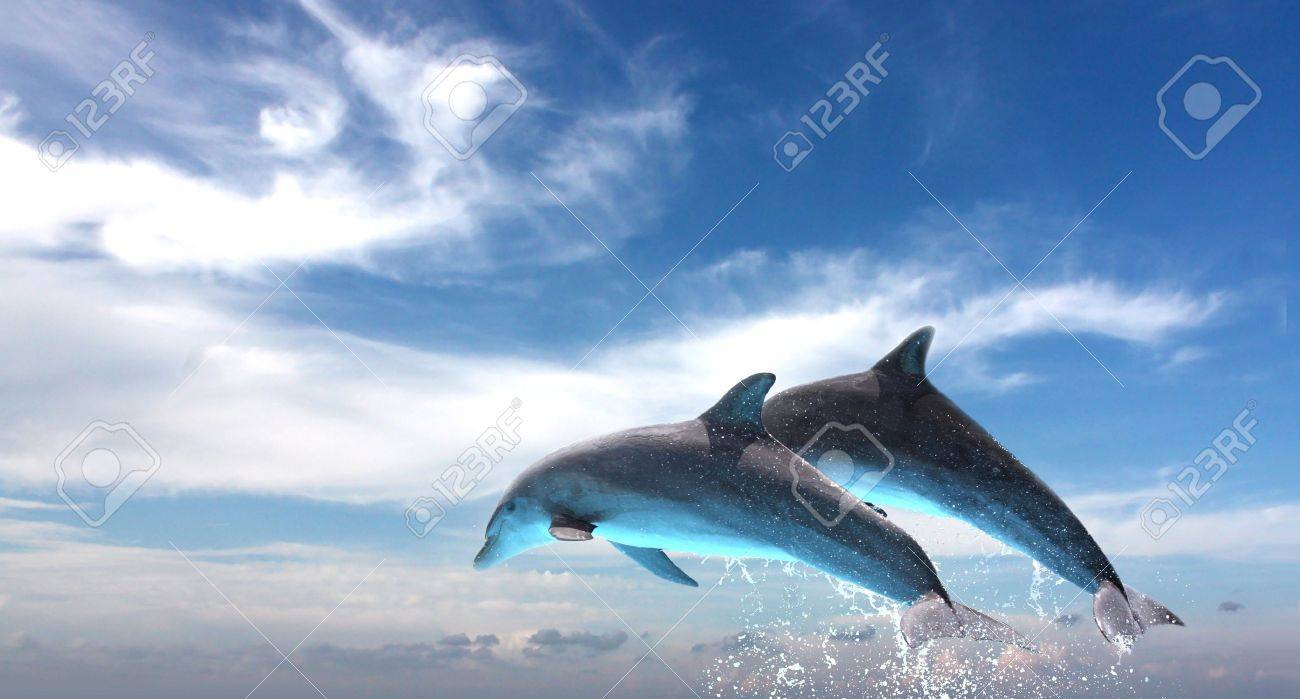 ocean life couple of dolphins jumping against the blue sky