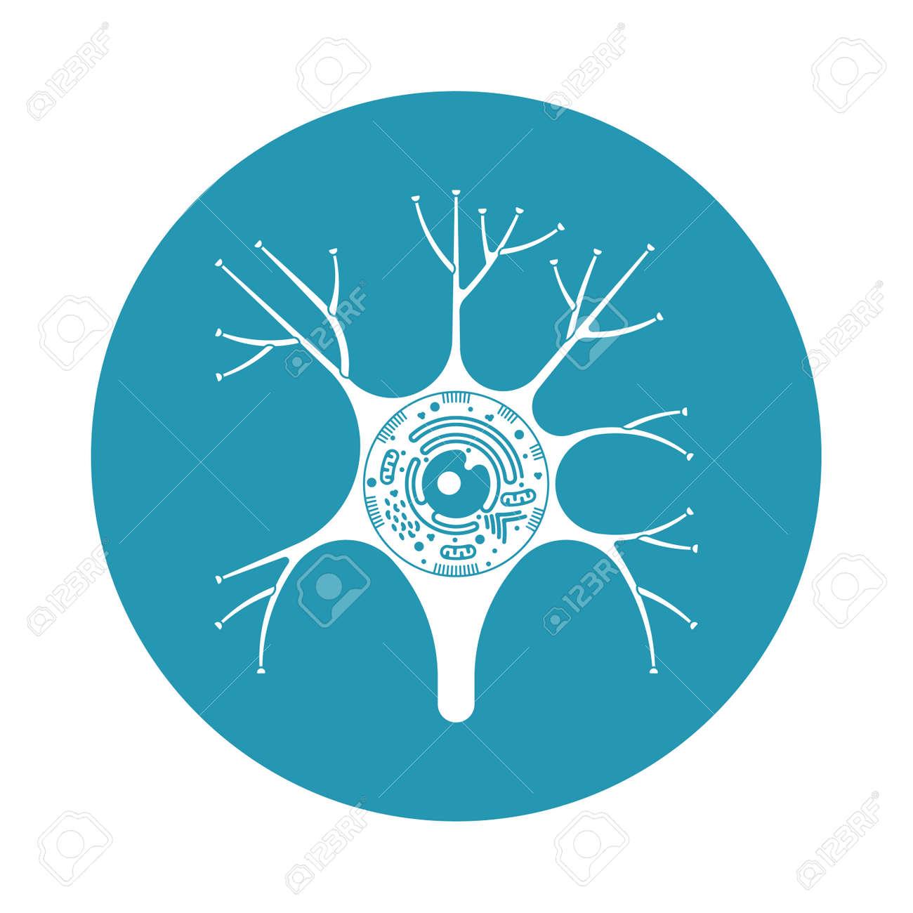 Aislado De La Neurona Icono De La Biología Celular. Ilustración De ...