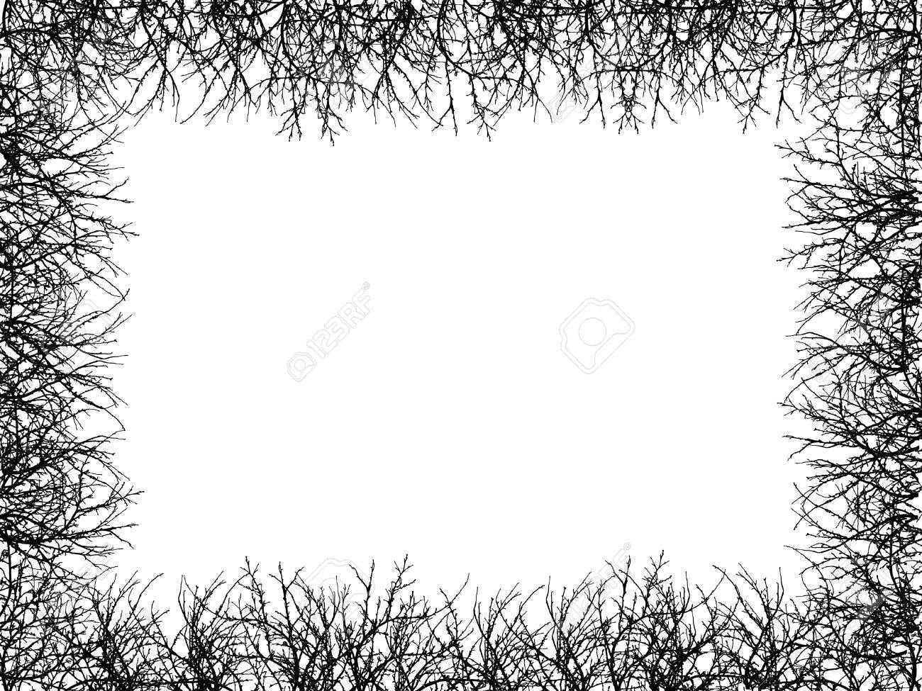 white background with black border sasolo annafora co