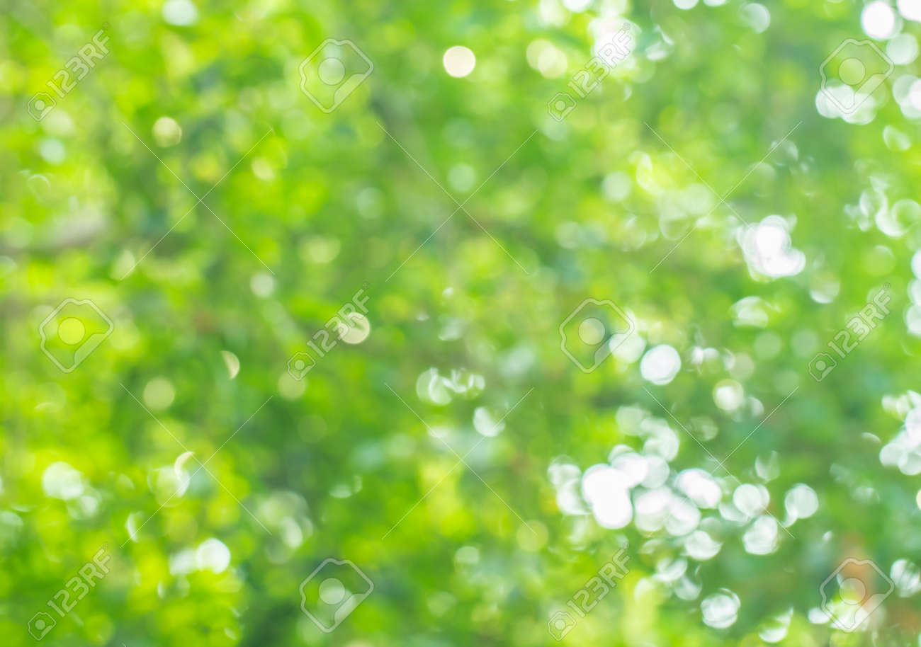 Abstract Blurred Bokeh Nature Background Stock Photo, Picture And