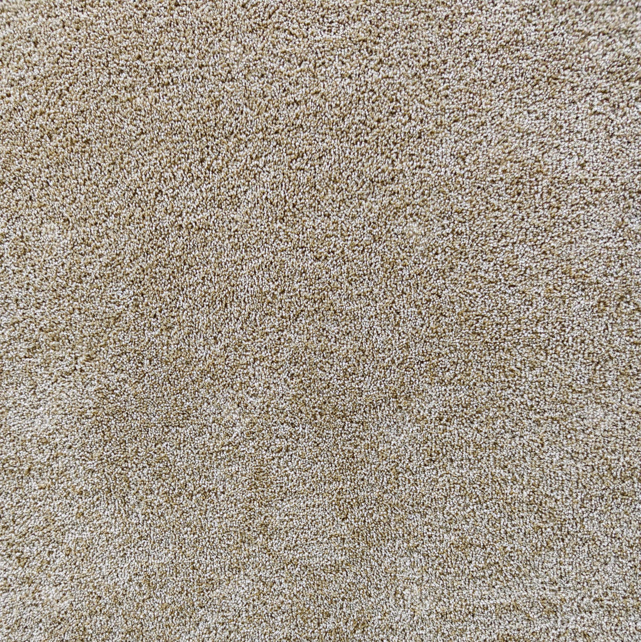 Textured carpet background. Beautiful background for designer collages. - 154278514