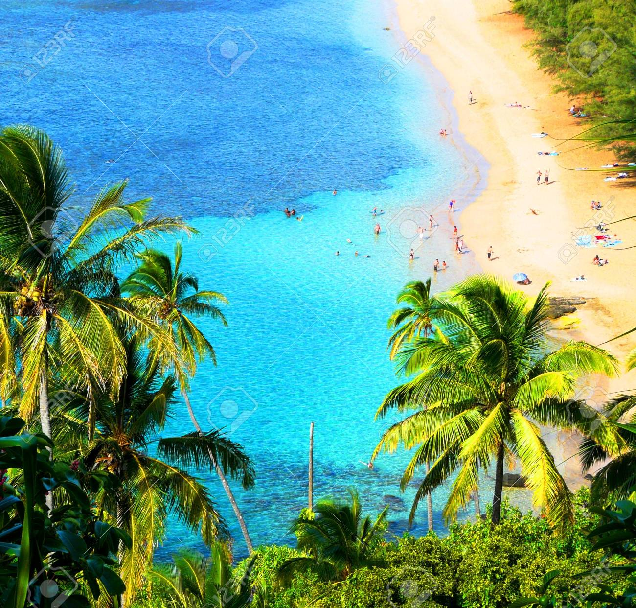 hawaiian beach Stock Photo - 6368036