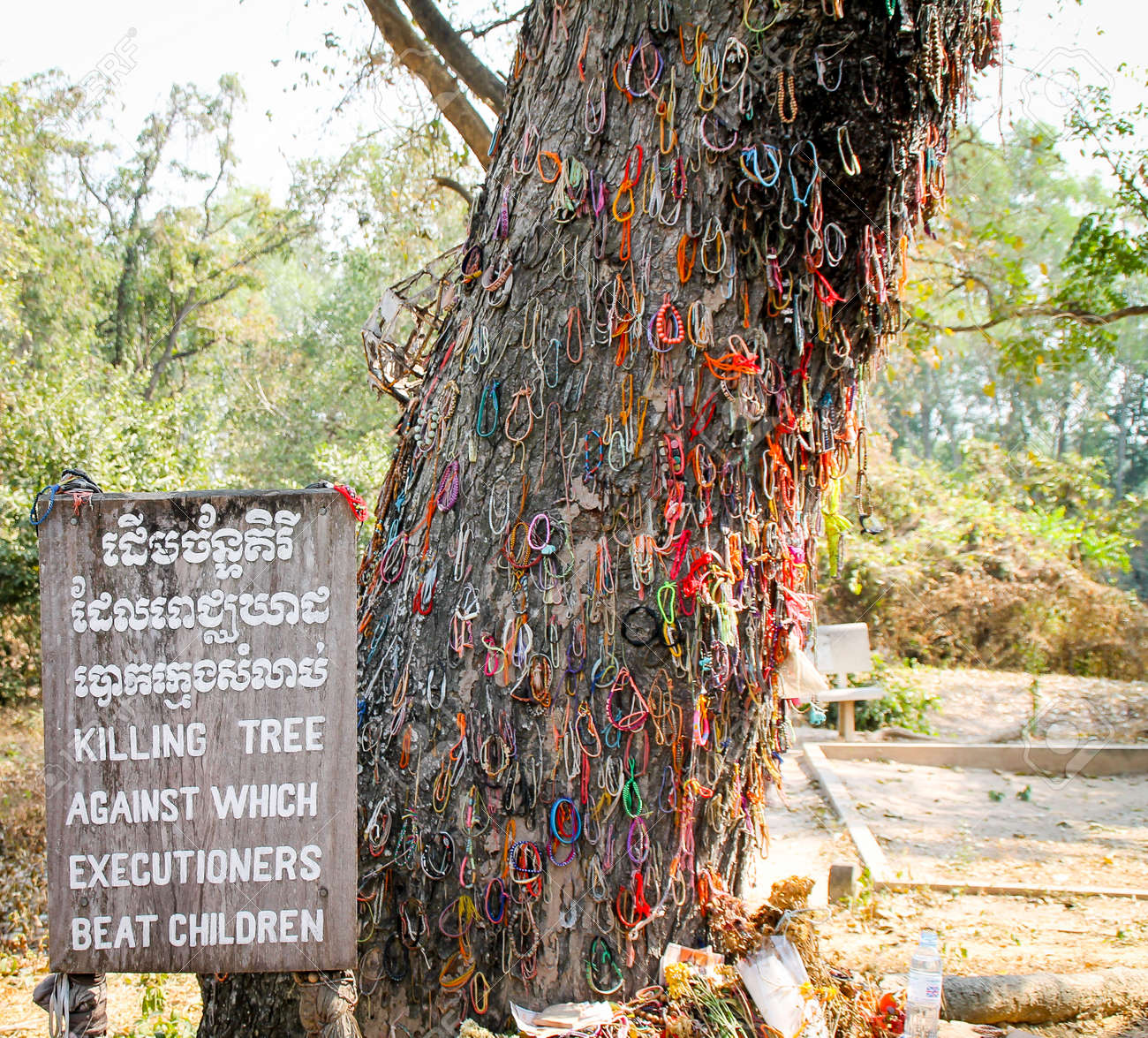 Killing tree against which executioners beat children, Phnom Penh - 54690635