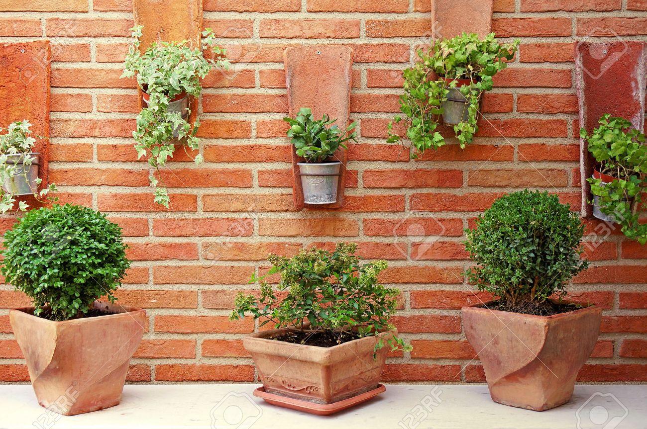 Jardin Vertical Ceramica Y Zinc Macetas En Una Pared De Ladrillo
