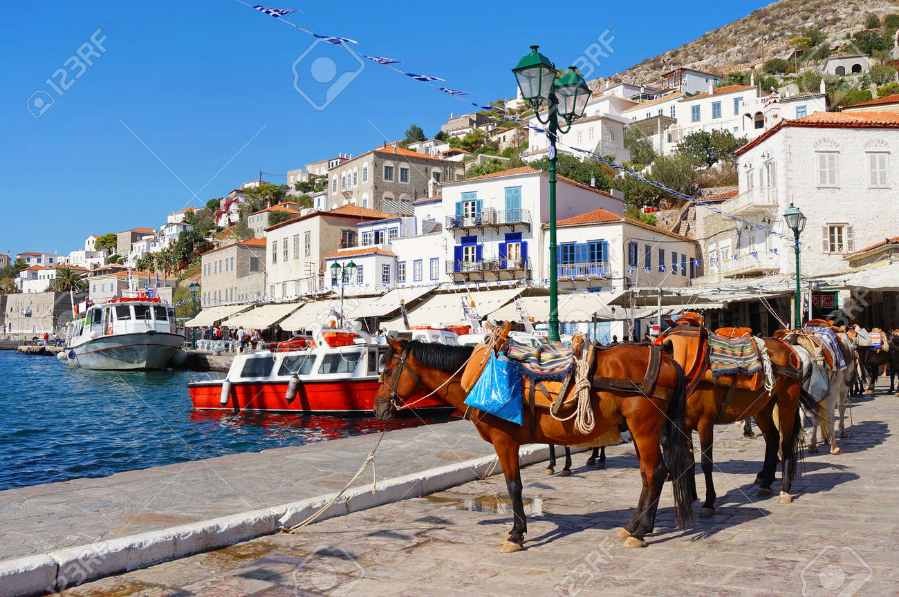 Mules Waiting for Tourists at the Port of Hydra Island in Greece - 69132565