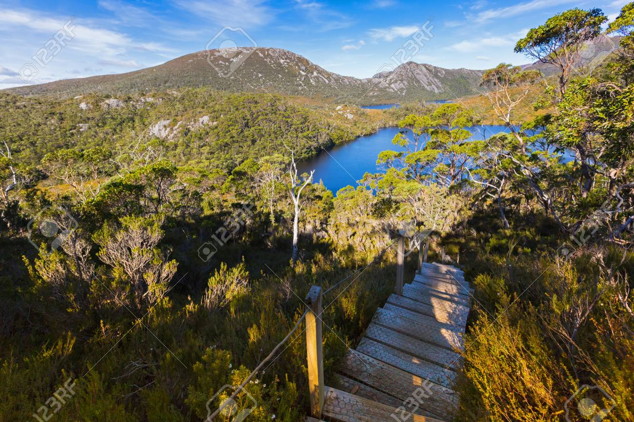 Stairs At Cradle Mountain Elevated Wooden Steps With Anti Slip