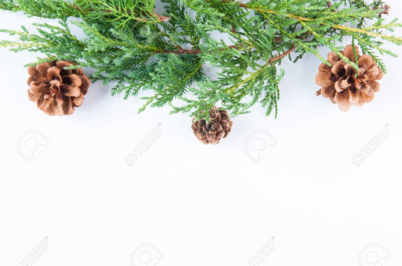 Christmas Greenery.Christmas Greenery With Pine Cones