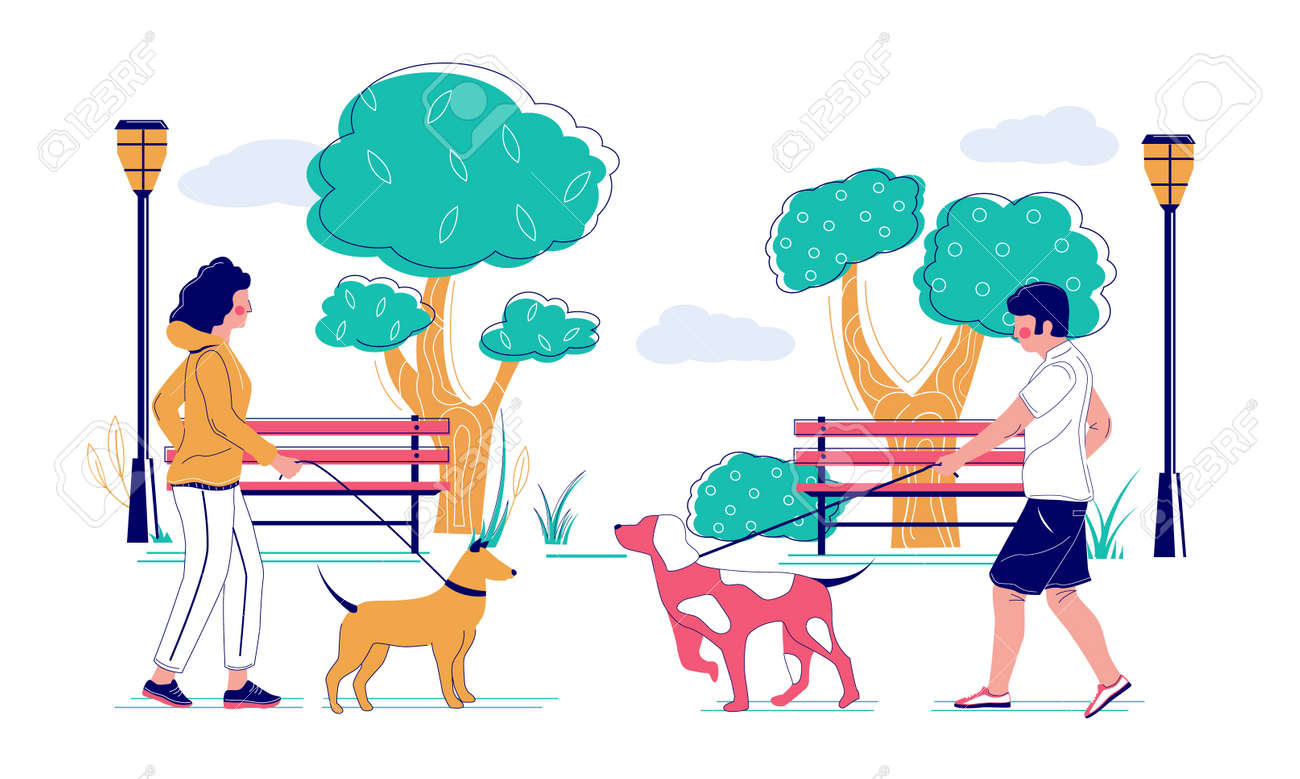 People walking their pet dogs in the park, vector flat illustration. Pet owners male and female characters taking their puppies for morning walk. Dog walking, caring for animals concept. - 145774062