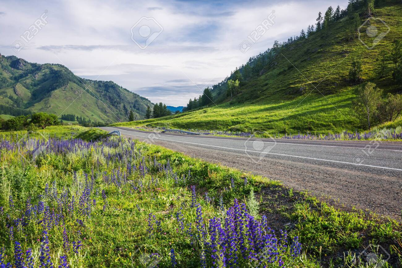 Altai Republic, southern Siberia, Russia - July 13, 2019: Federal highway - Chui tract, in the Altai mountains - 128255111