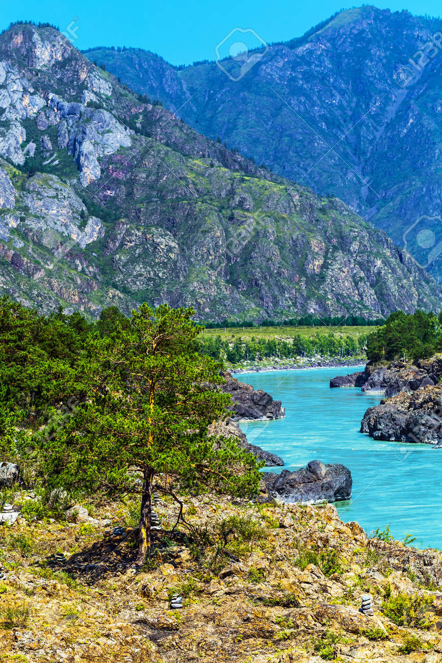 Chemal district, Altai Republic, southern Siberia, Russia - August 15, 2019: a view of the Katun river and rapids Teldekpen have Oroktoysky bridge - 129773586