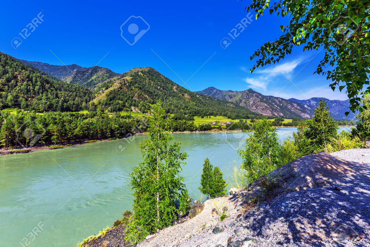 View of Katun river and mountain valley in summer. Chemalsky district, Altai Republic, southern Siberia, Russia - 129782111