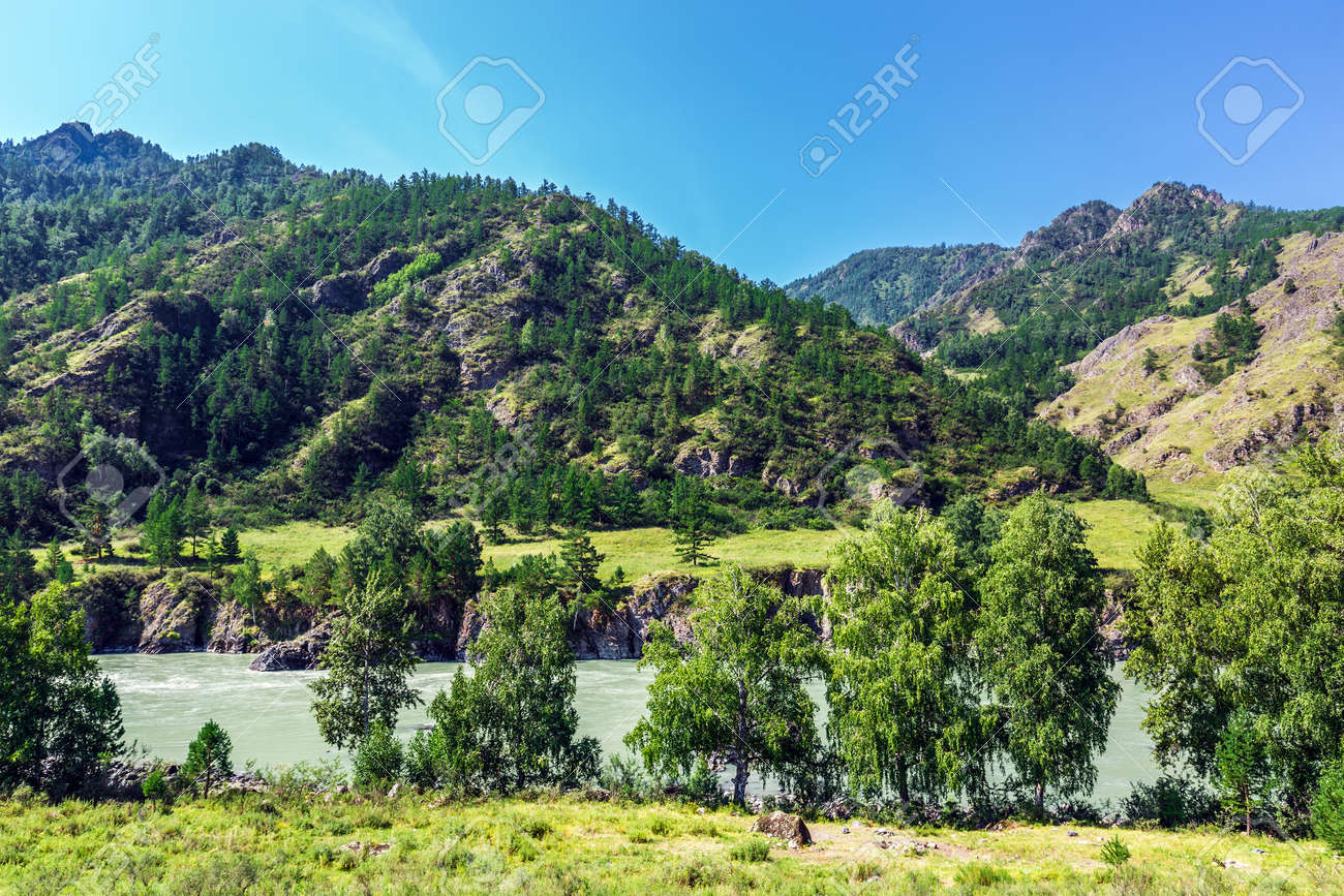 View of Katun river and mountain valley in summer. Chemalsky district, Altai Republic, southern Siberia, Russia - 129773903