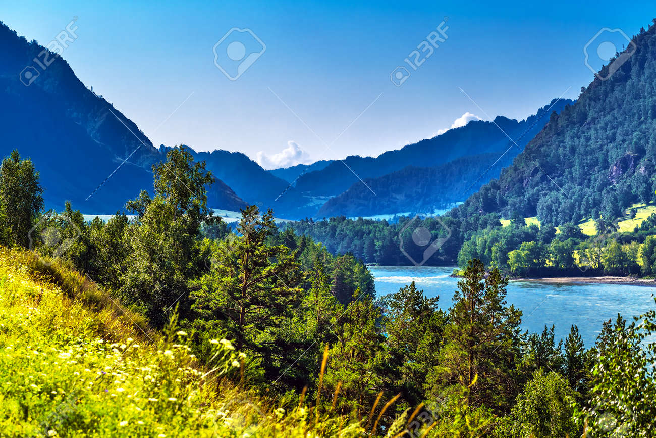 View of Katun river and mountain valley in summer. Chemalsky district, Altai Republic, southern Siberia, Russia - 129782155
